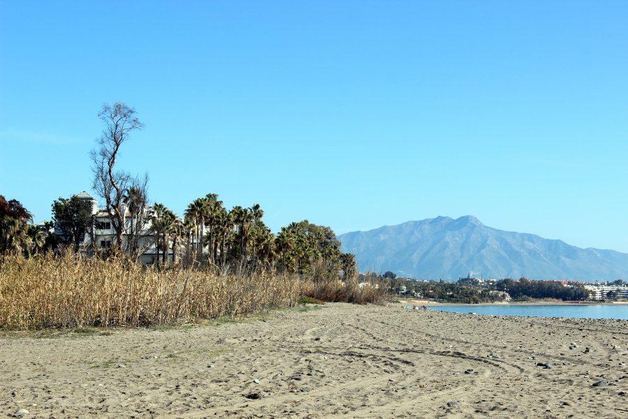 Imagen actual de la playa por donde discurrirá el trazado.