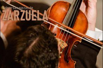 La Orquesta Sinfónica de Málaga interpretará 'El Concierto de Aranjuez' en la Plaza de Toros de Estepona.