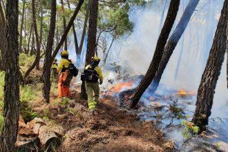 Incendio en la zona de Peñas Blancas en Jubrique. INFOCA