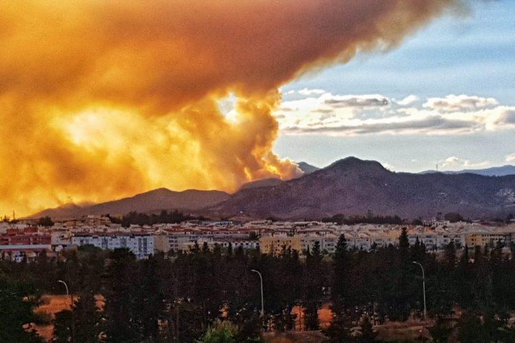 Incendio de Sierra Bermeja.